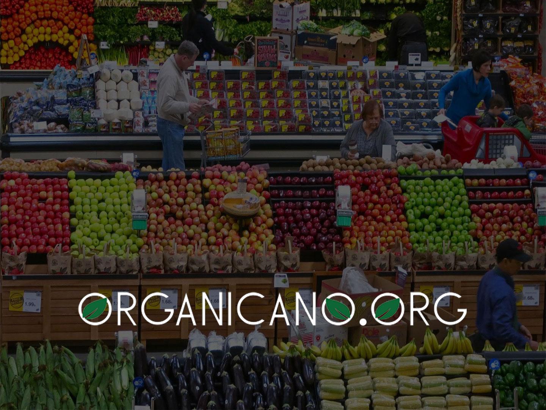 OrganicanoORG-site